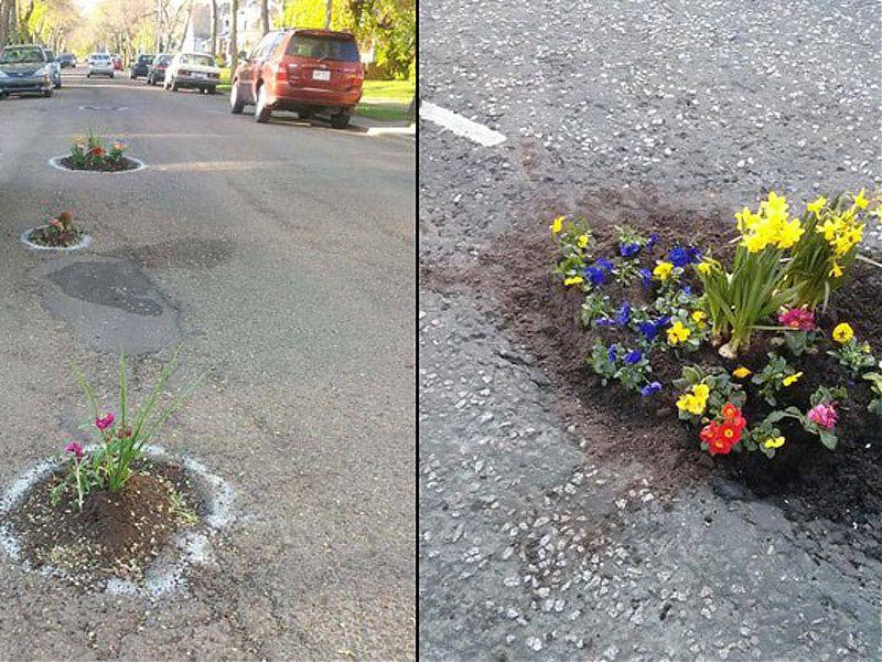 ¿Calle o jardín?