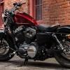Michelin calza de origen a 1/3 de la gama Harley-Davidson
